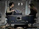 Sal Viscuso trying to describe 'Aquarium' to his partner